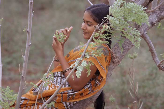 Vanmuraippaguthi-movie-review