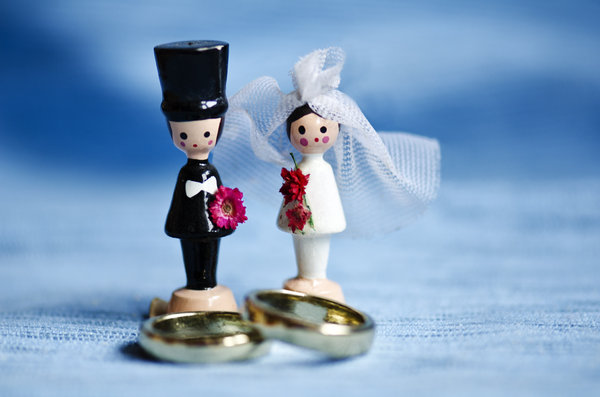 Toy marriage