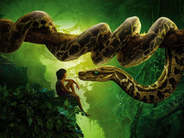 Jungle-Book-Fi